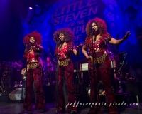 Little Steven & the Disciples of Soul - Toronto