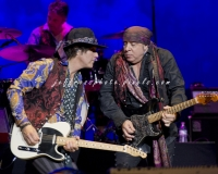 Marc Ribler and Steve van Zandt