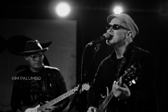 Marshall Crenshaw and The Bottle Rockets