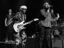 Nile-Rogers-and-Chic-044