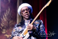 Nile-Rogers-and-Chic-052