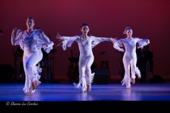Sue Samuels Choreographer